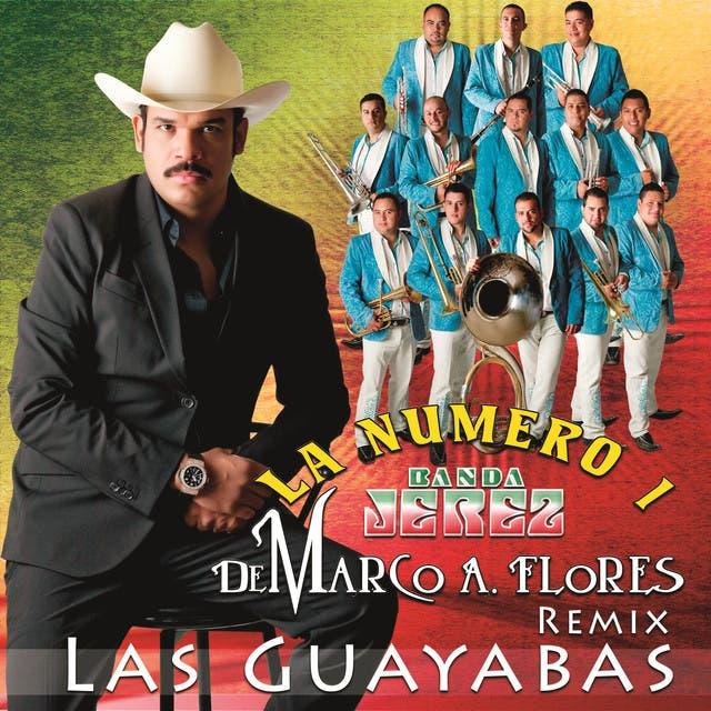 Las Guayabas