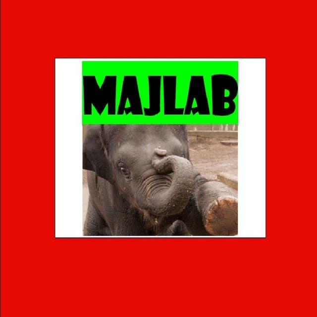 MajLab