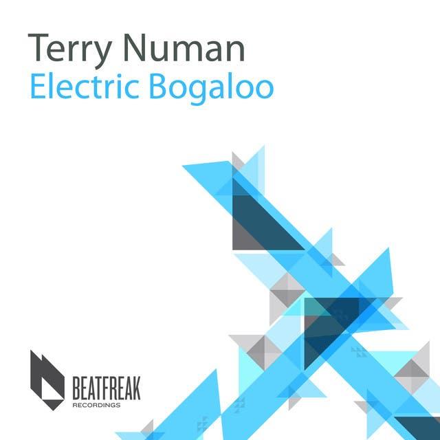 Terry Numan