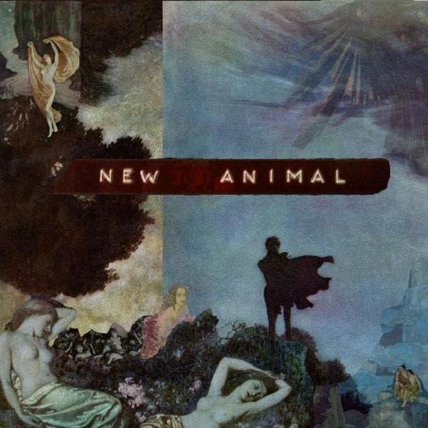 New Animal