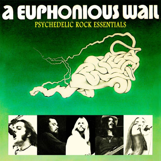 A Euphonious Wail image