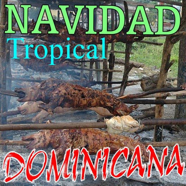 Navidad Tropical Dominicana