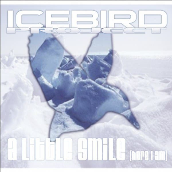 Icebird Project