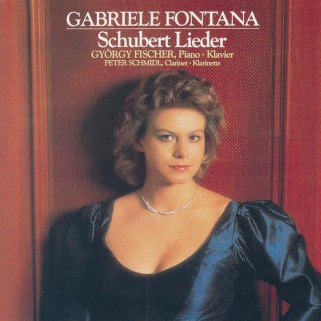 Gabriele Fontana image