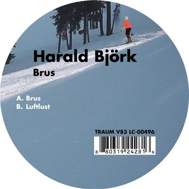 Harald Björk image