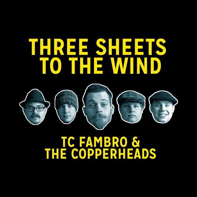 TC Fambro & The Copperheads image