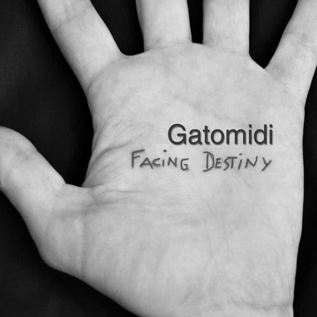 Gatomidi image