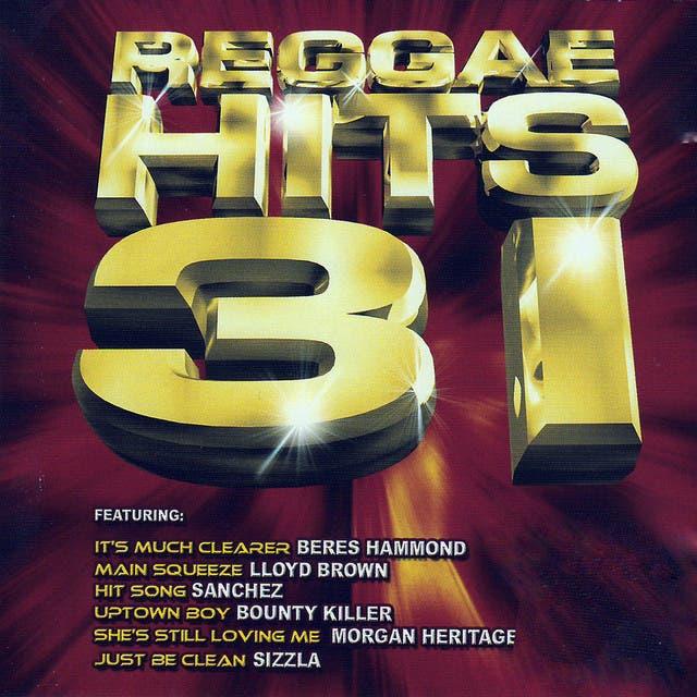 Reggae Hits 31