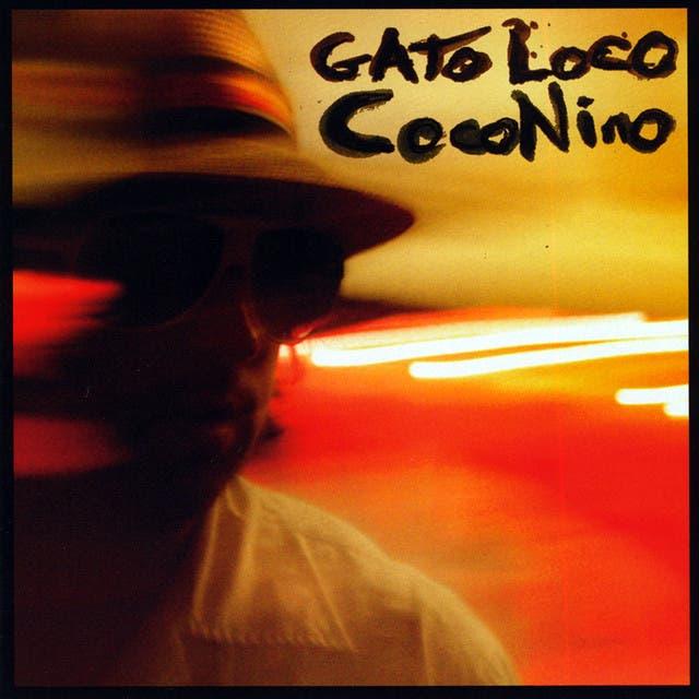 Gato Loco image