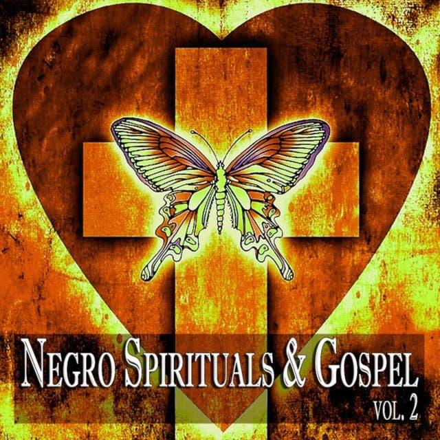 Negro Spirituals & Gospel Vol. 2