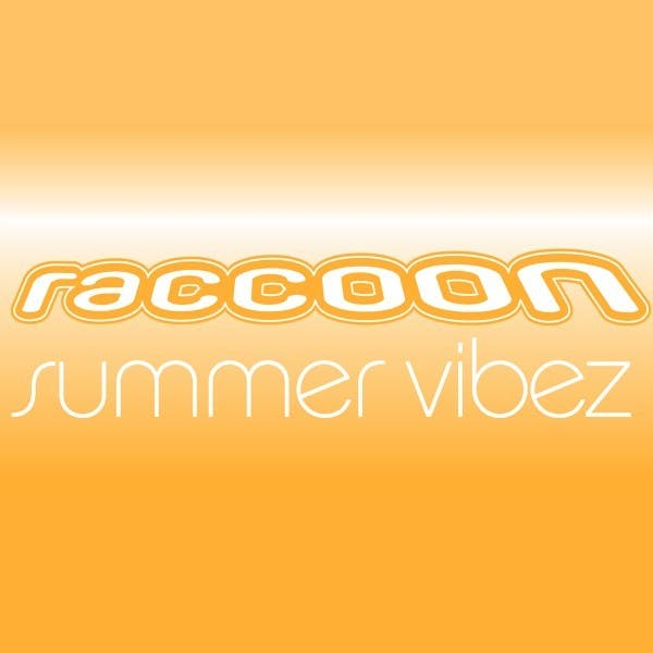 Raccoon image