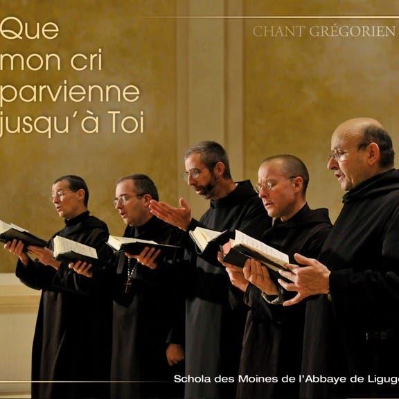 Abbaye De Ligugé image