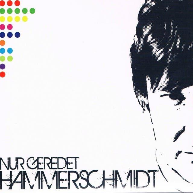 Hammerschmidt image