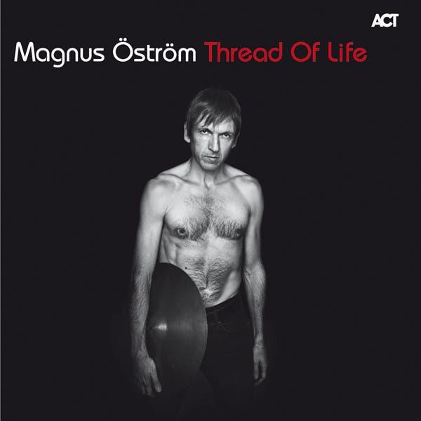 Magnus Ostrom