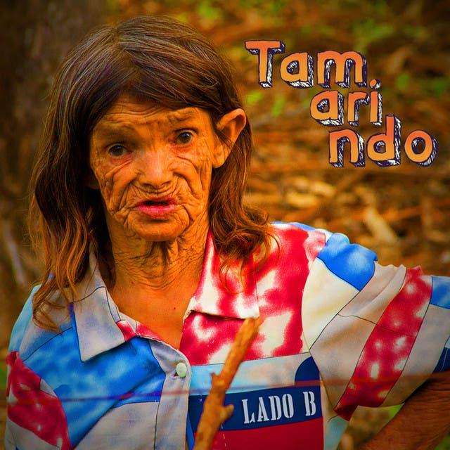 Tamarindo image