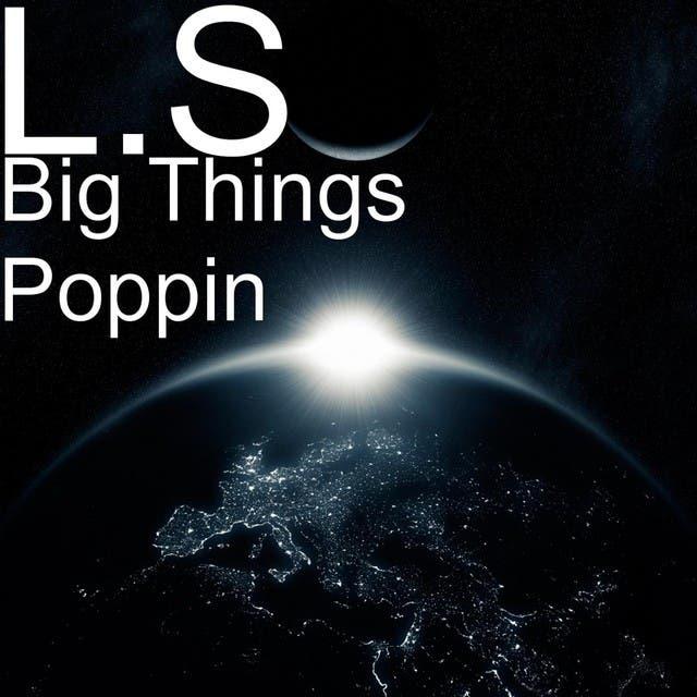 L.S. image