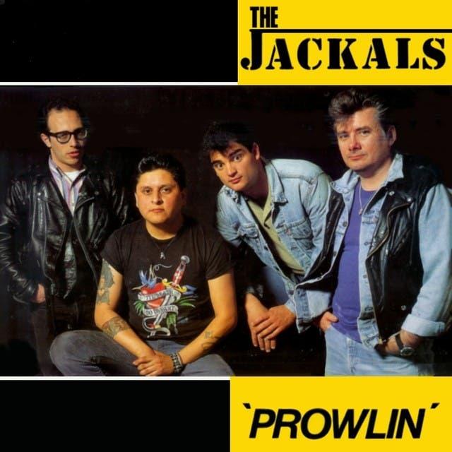 Jackals image