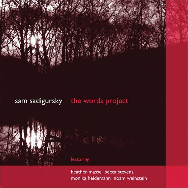 Sam Sadigursky image