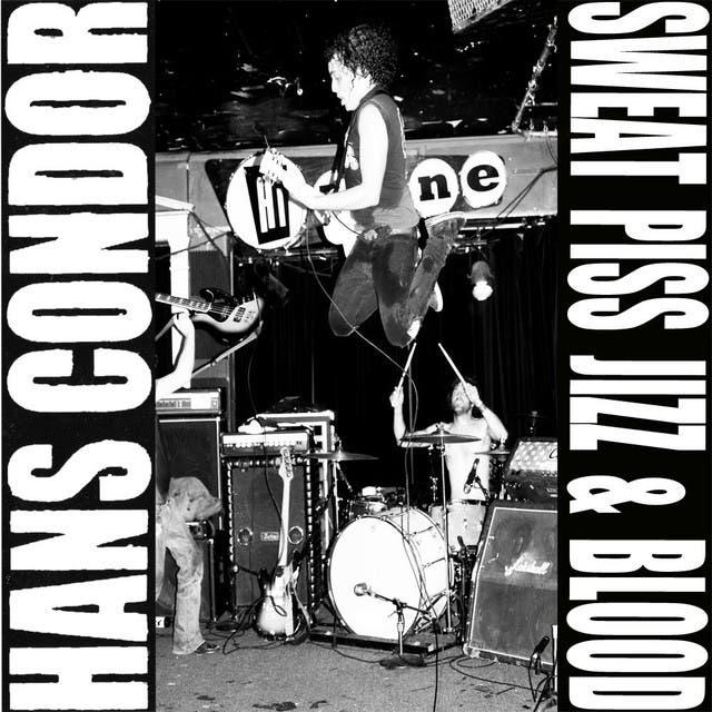 Hans Condor image