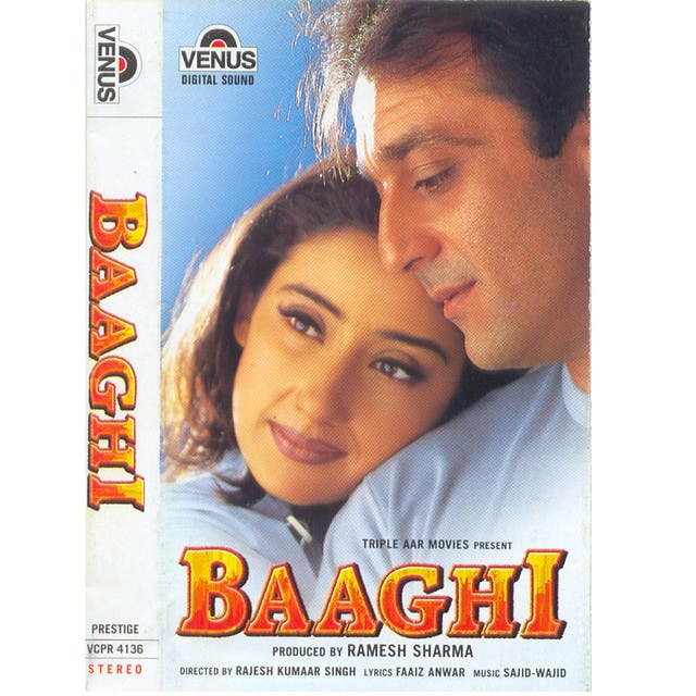 Baaghi  - Hindi Film (New)