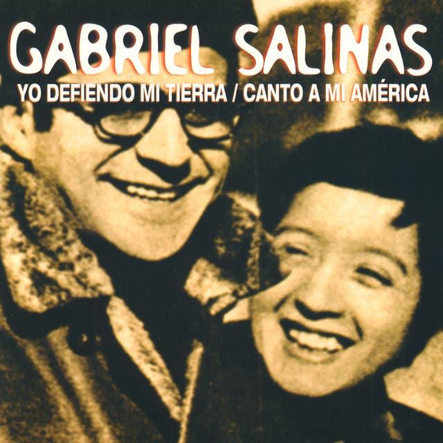Gabriel Salinas image