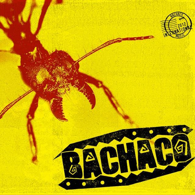 Bachaco