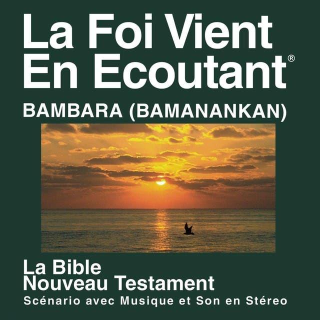 Bambara Du Nouveau Testament (dramatisé) - Bambara Bible