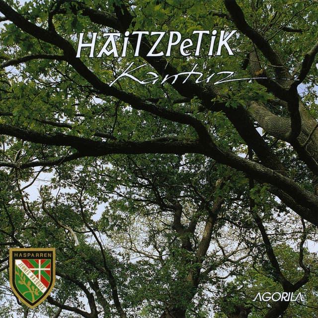 Haitzpetik