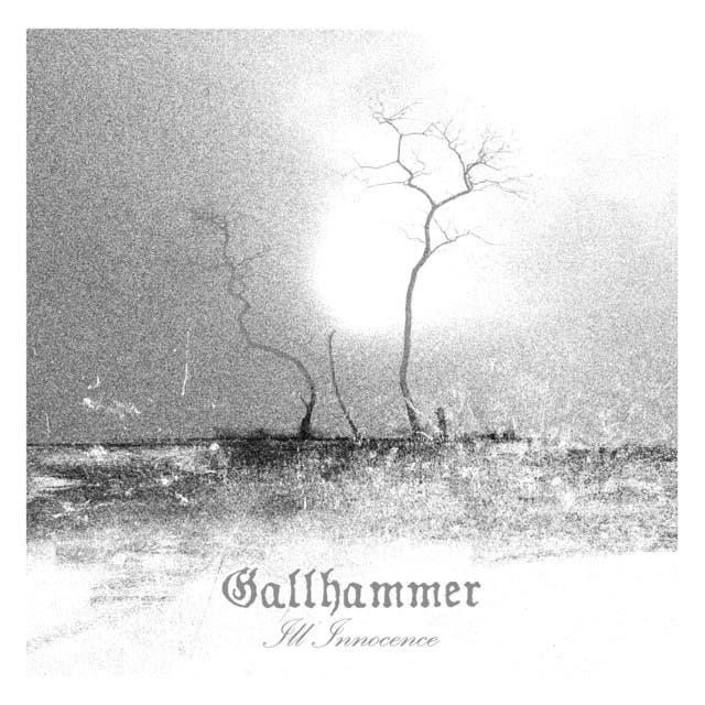 Gallhammer image