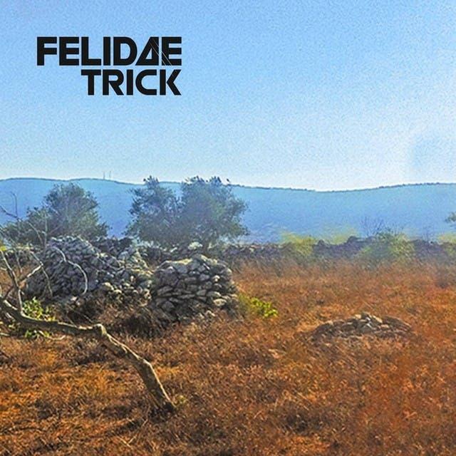 Felidae Trick