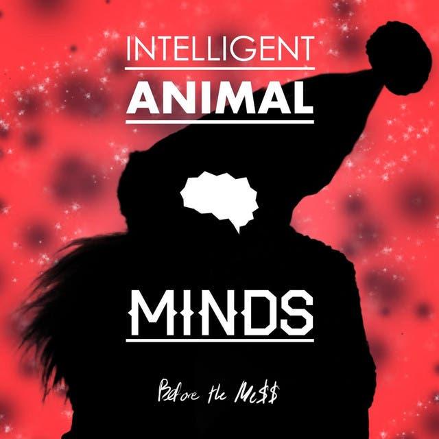Intelligent Animal Minds