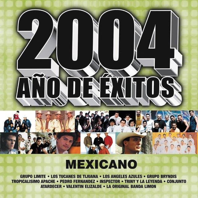 2004 Año De Exito Mexicano