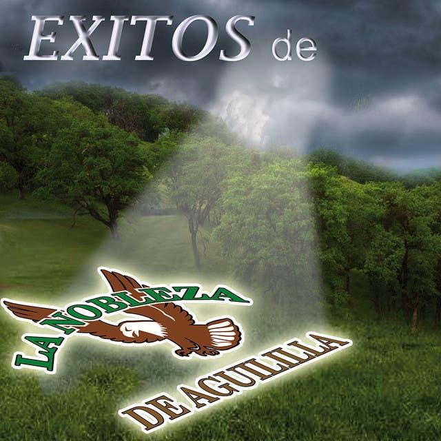 Exitos De La Nobleza De Aguililla