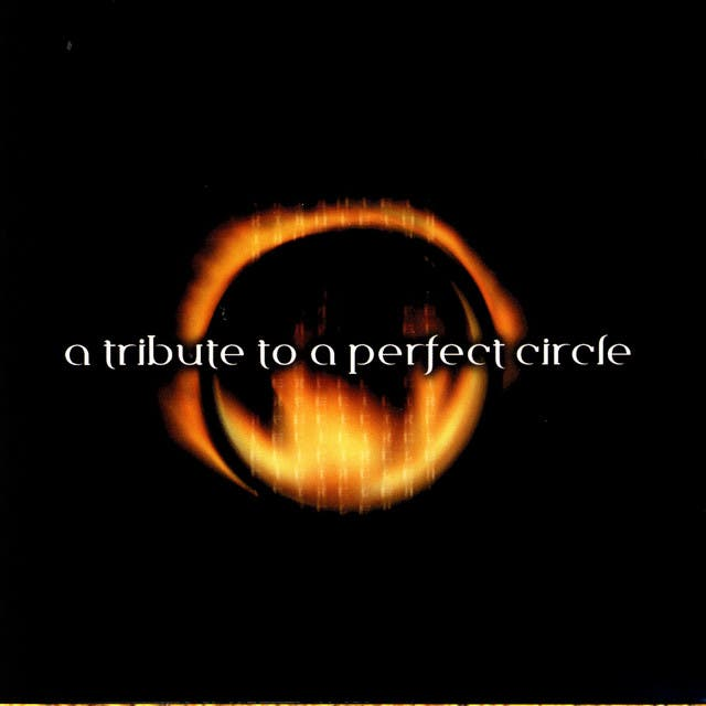 A Tribute To A Perfect Circle