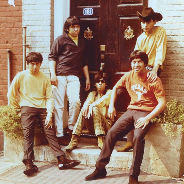 Question Mark & The Mysterians image