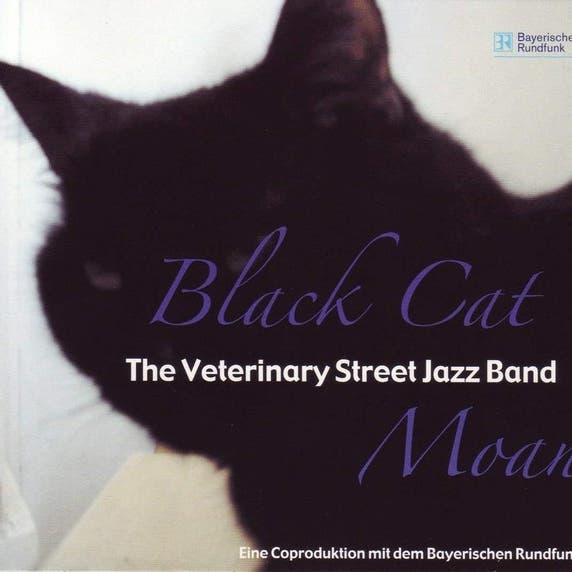 Veterinary Street Jazz Band