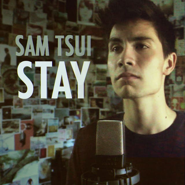 Stay (originally By Rihanna Feat. Mikky Ekko)