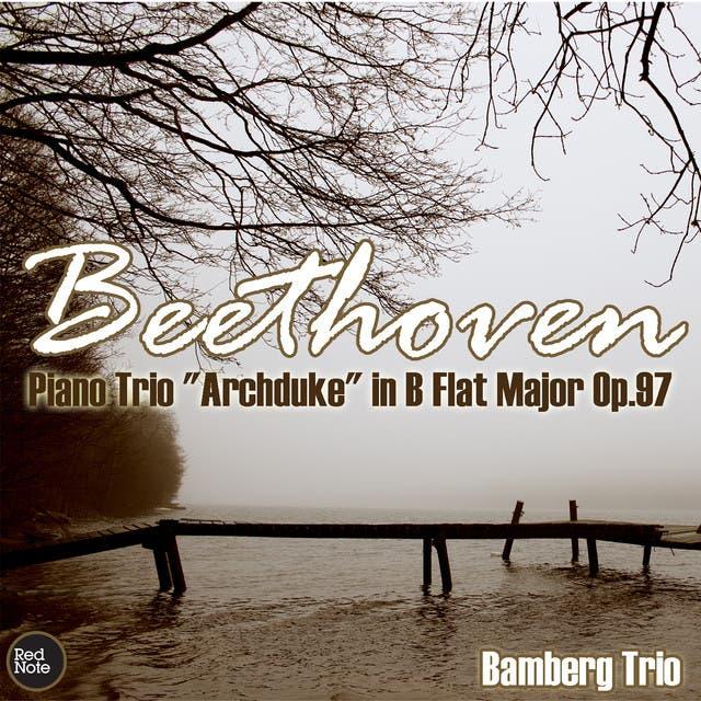 Bamberg Trio image