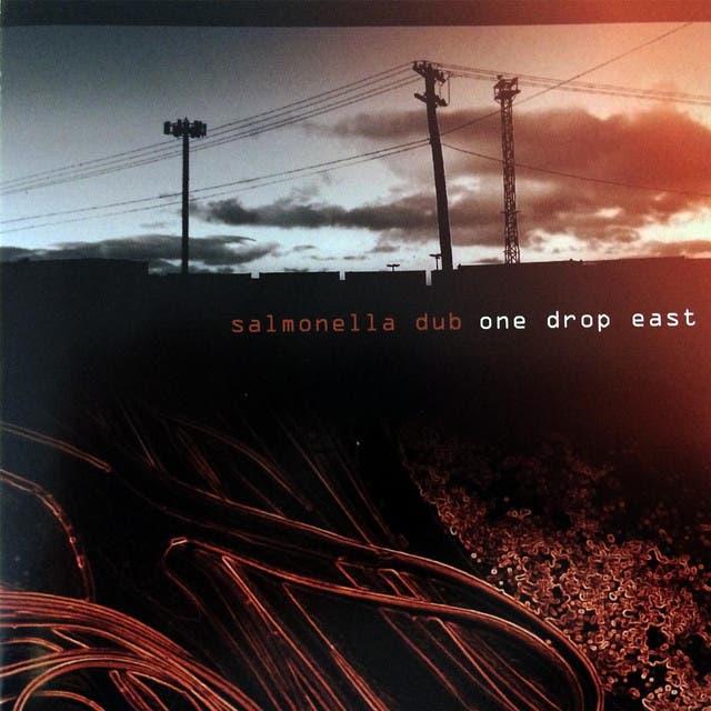 Salmonella Dub image