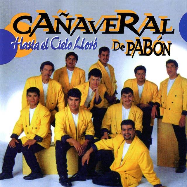 Cañaveral De Pabon
