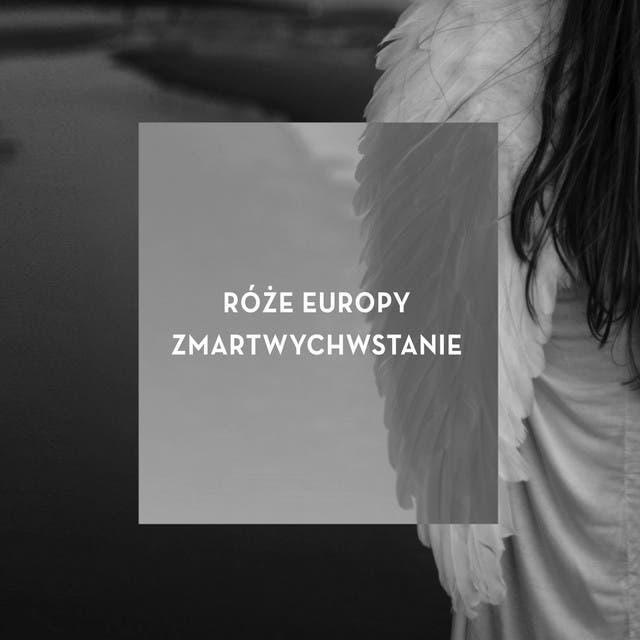 Róze Europy