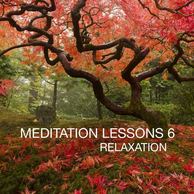 Meditation Lesson, Vol. 6 (Relaxation)