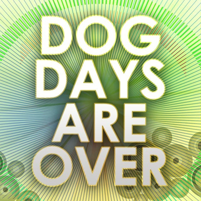 Dog Days Are Over (A Tribute To Florence And The Machine)