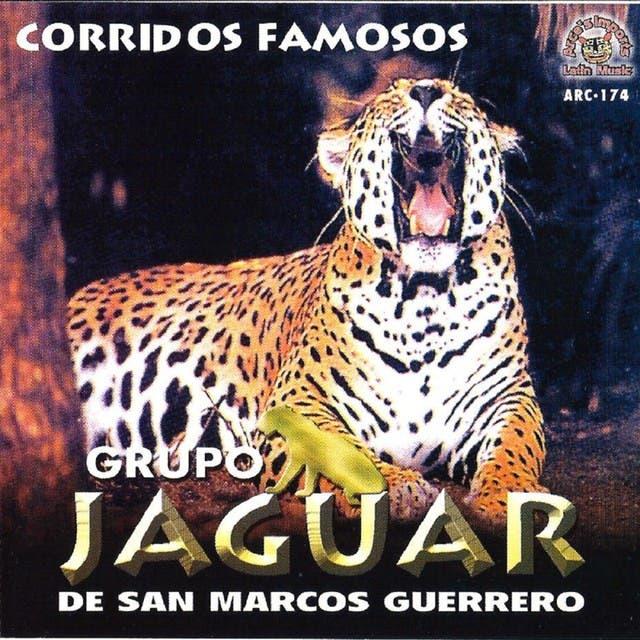 Jaguar De San Marcos Guerrero image