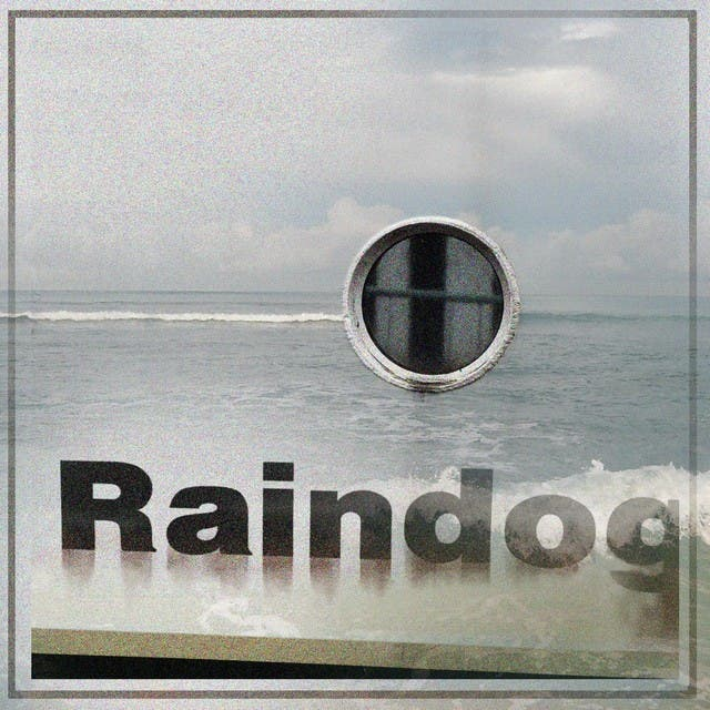 Rain Dog image