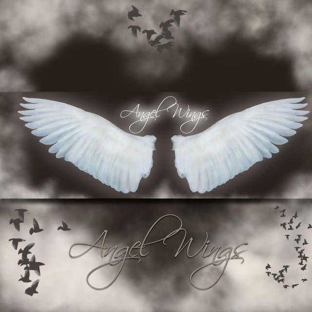 Angel Wings Karaoke Collection Volume 12