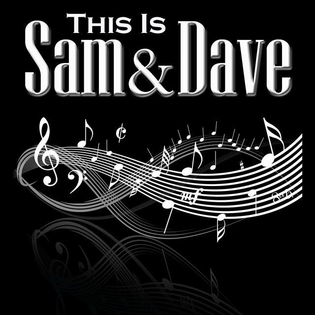 Sam And Dave image