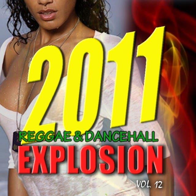 2011 Reggae & Dancehall Explosion Vol.12