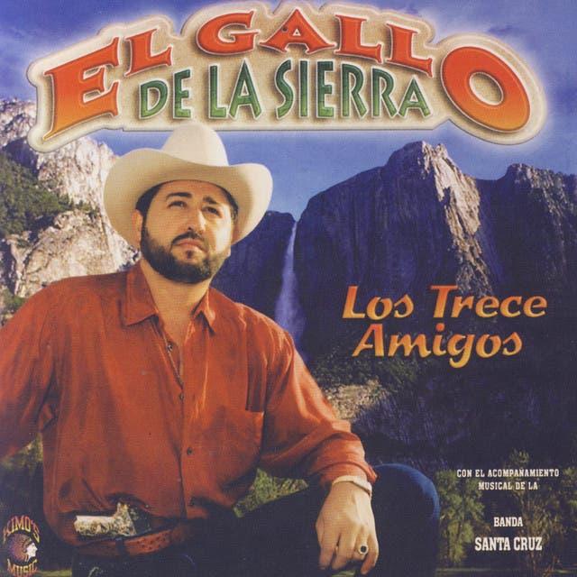 El Gallo De La Sierra
