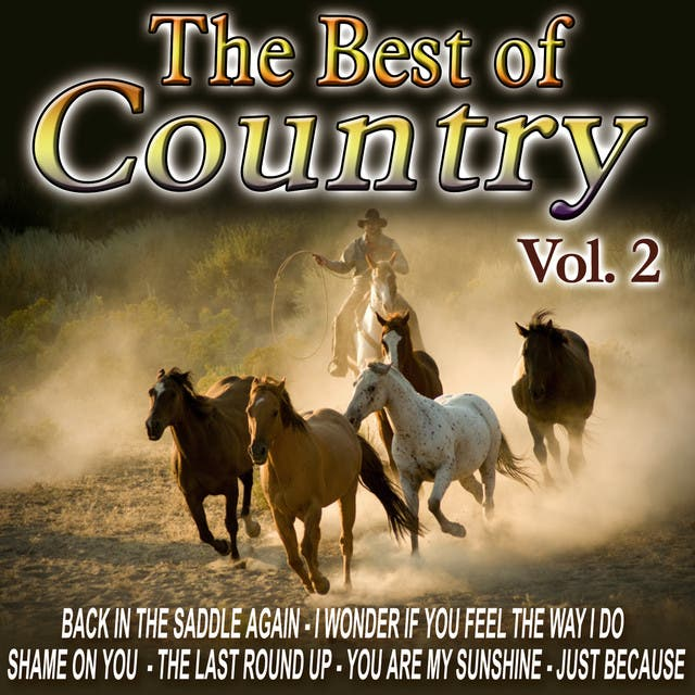 The Best Of Country Hits Vol. 2